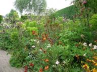 Vasteplanten border